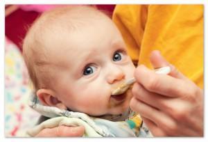 Говядина в прикорме малыша