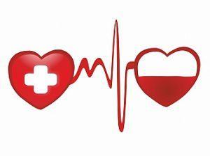 Диета донора – как правильно питаться человеку, который спасает жизни других?