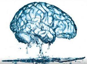 Запоминай! 20 продуктов для улучшения памяти