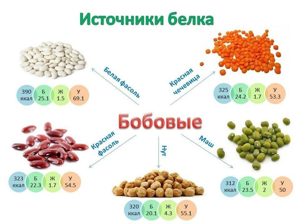 Польза орехов часть 2 питание tonusby