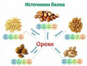 Источники белка Орехи