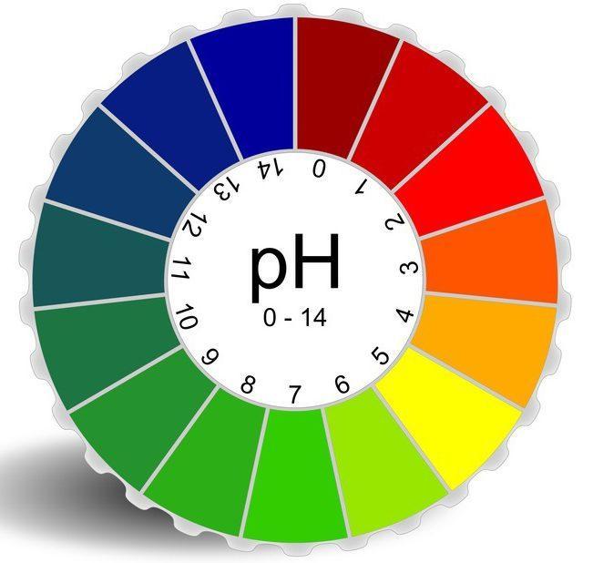 pH баланс