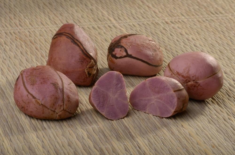 Лечебные свойства ореха колы