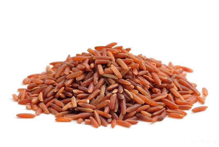 Бурый рис1